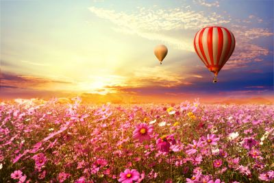 Cosmo Field & Hot Air Balloons in Sunset Wall Mural
