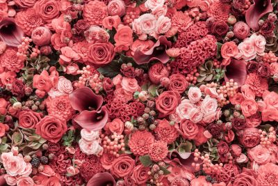 Pink Flowers Wall Mural