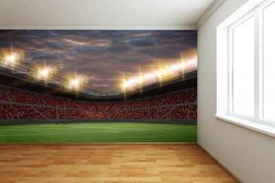 Rugby Stadium (Full Wall) Mural