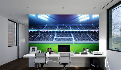 Football Stadium Goal (Full Wall) Mural