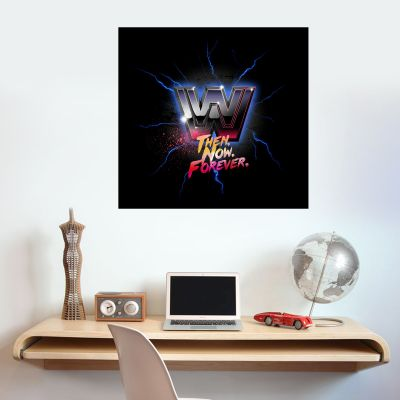 WWE - Then Now Forever Wall Sticker