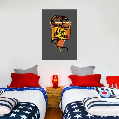 WWE - Randy Orton Graphic Wall Sticker