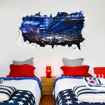 WWE - Smackdown Arena Smashed Wall Sticker