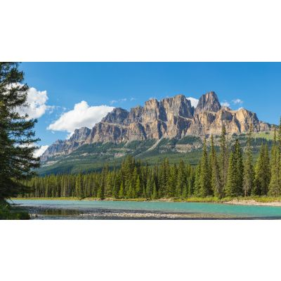 Castle Mountain & Bow River Canada Wall Mural