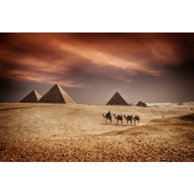 Pyramids of Giza and Camels Egypt Wall Mural