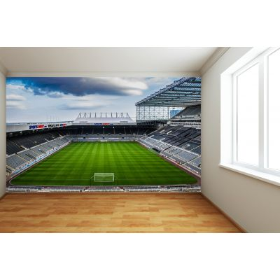 Newcastle United FC - St James Park Stadium Full Wall Mural Empty Stadium Picture