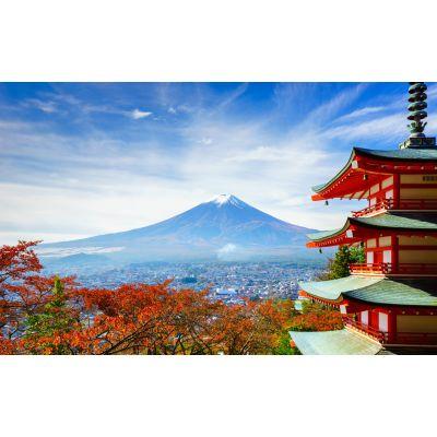 Mount Fuji Japan Wall Mural