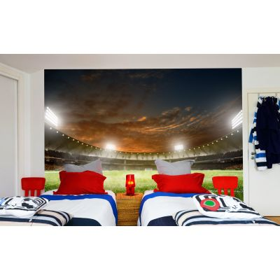 Football Stadium Night (Full Wall) Mural