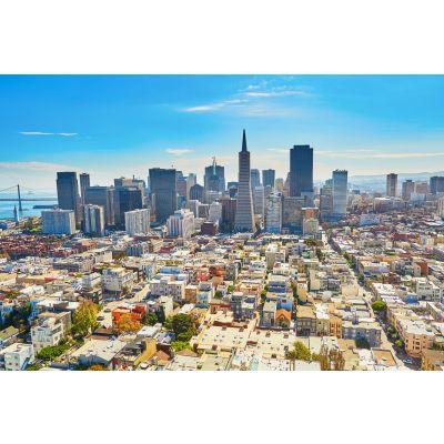 Down Town San Francisco Wall Mural