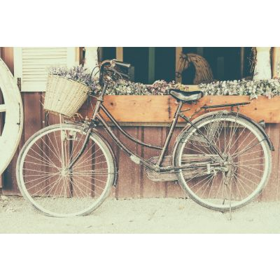 Vintage Bicycle Wall Mural