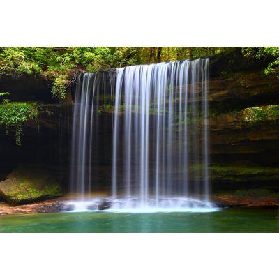 Rainforest Waterfall Wall Mural