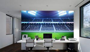 Football Stadium Goal (Full Wall) Mural