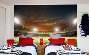 Football Stadium Night (Full Wall) Mural