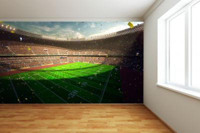 American Football Stadium (Full Wall) Mural