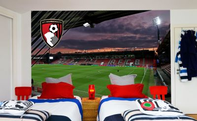 AFC Bournemouth - Vitality Stadium Full Wall Mural